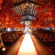 Wedding ideas-17.jpg