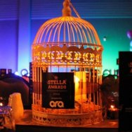 Birdcage-with-decoration.jpg