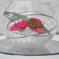 gerbera fish bowl.JPG
