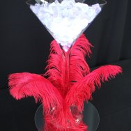 Martini and Feather plume.jpg