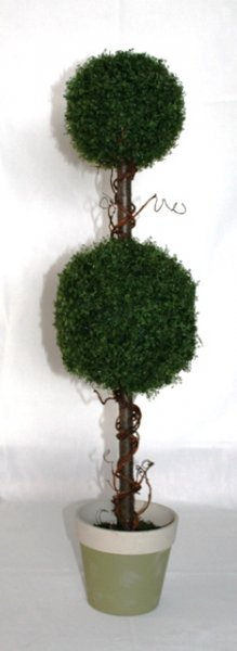 Topiary tree, silk double ball