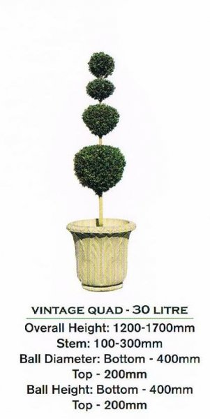 Topiary tree, quad ball