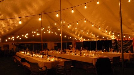 Festoon light string, mini