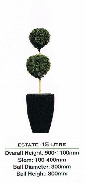 Topiary tree, double ball