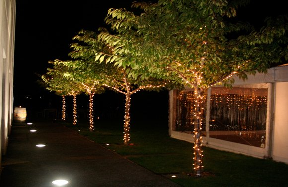 Fairylight, LED string 5m (cool white)