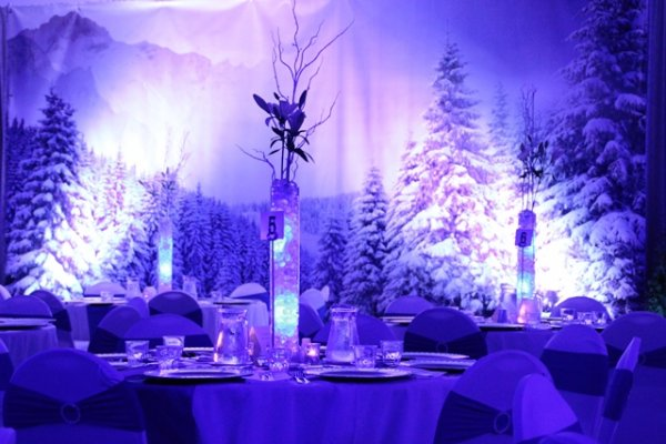 Backdrop, Winter Wonderland